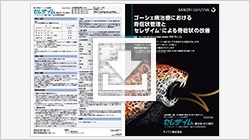 DLE_16_10_2533_01